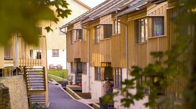 Cohousing in de stad en het woonerf 2.0